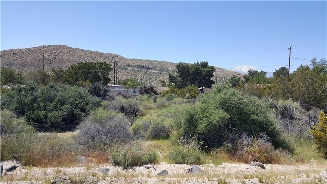 9 Senilis Avenue, Morongo Valley, CA 92256