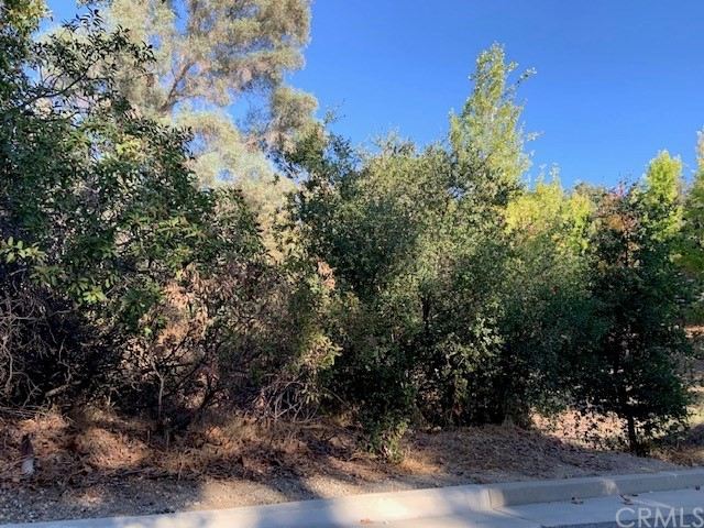 190 Sycamore Lane Bradbury, CA 91008