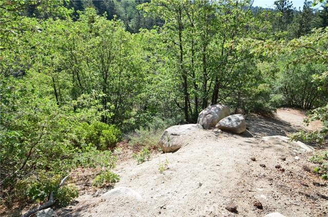 1 Deer Lick Dr., Arrowbear, CA 92382 Photo 6