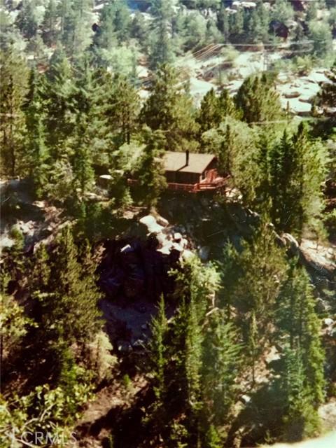 33006 Falling Leaf Ln, Arrowbear, CA 92382 Photo 1