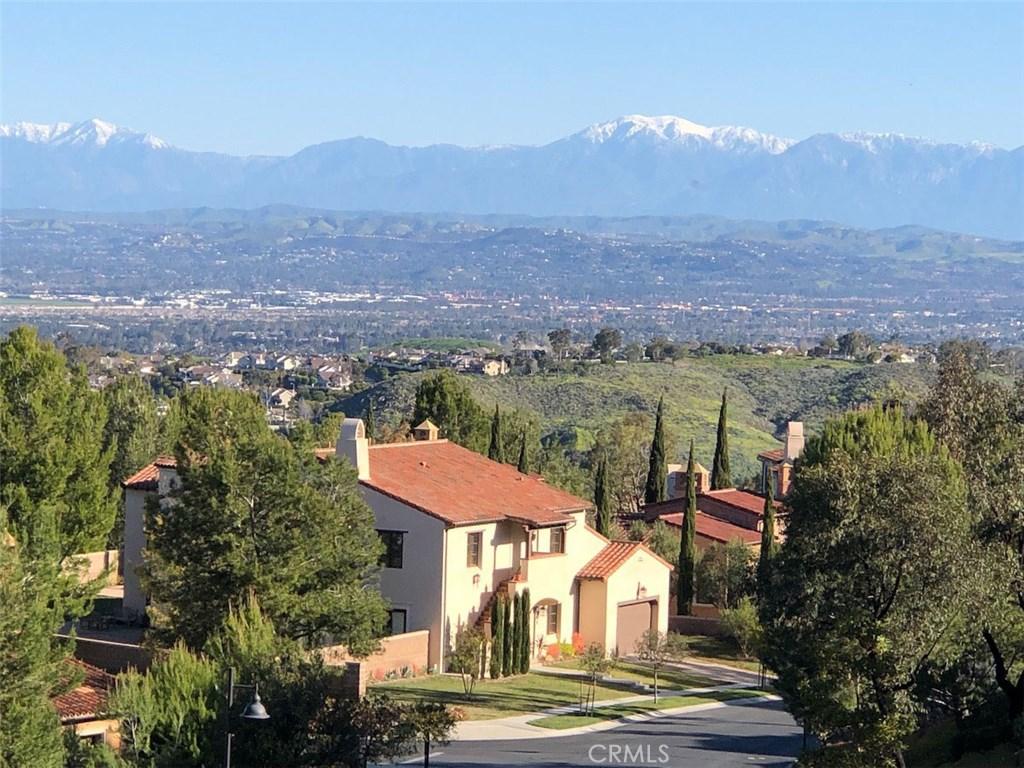 29     Grandview, Irvine CA 92603