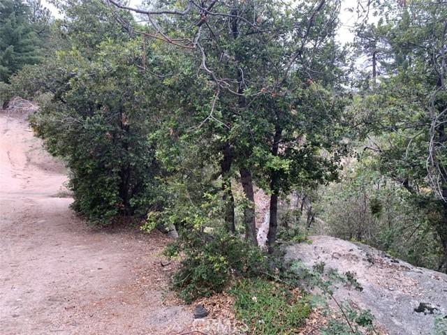 0 Tank Road, Arrowbear, CA 92382 Photo 3