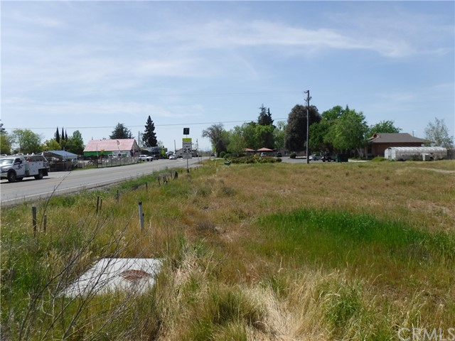 0 HWY 32, Hamilton City, California 95951, ,Commercial Sale,For Sale,HWY 32,SN18080853
