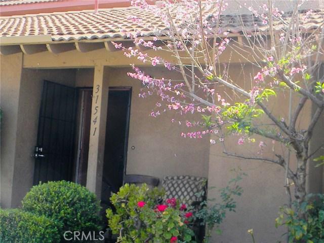 31541 Calle La Purisima  San Juan Capistrano, CA 92675