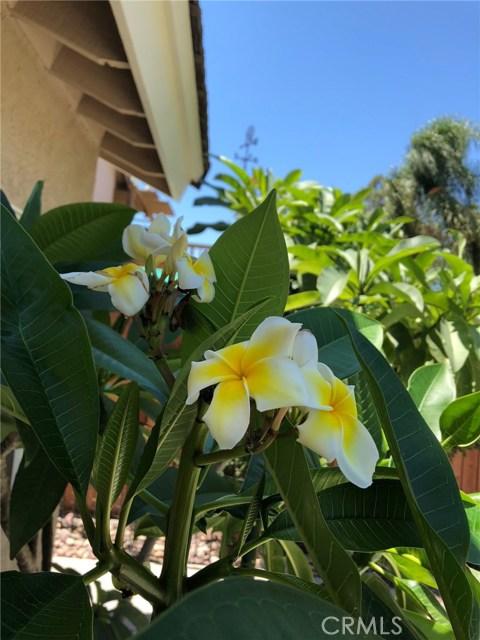 31060 Corte Arroyo Vista Dr, Temecula, CA 92592 Photo 22