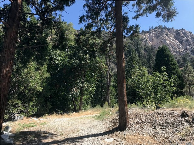 0 Island Drive, Forest Falls, CA 92339