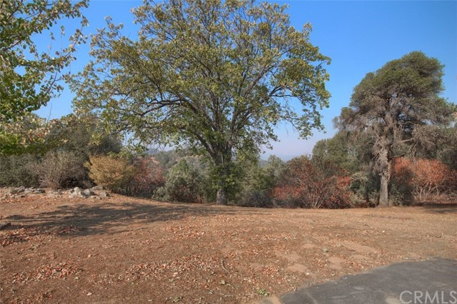 31973 Mountain Ln, North Fork, CA 93643 Photo 42