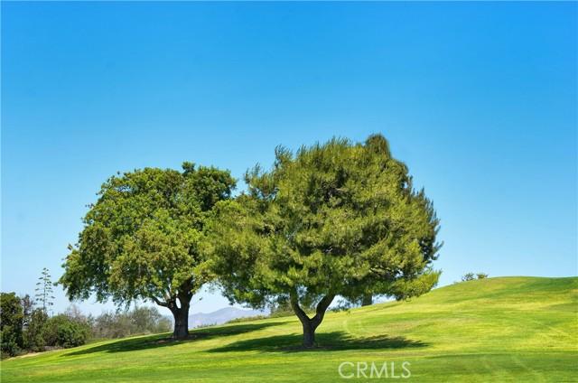 28. 24055 Paseo Del Lago #1057 Laguna Woods, CA 92637