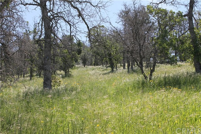 2647 Old Highway, Catheys Valley, CA 95306