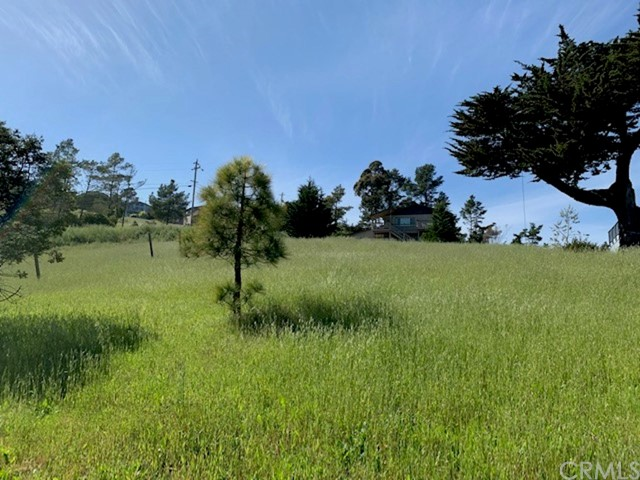 0 Finney Rd, Cambria, CA  Photo 2
