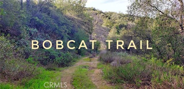 19320010 Bobcat, Santa Ysabel, CA 92036