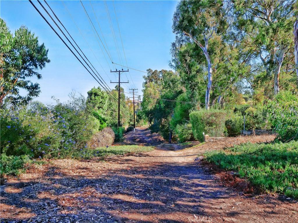 Trail behind house