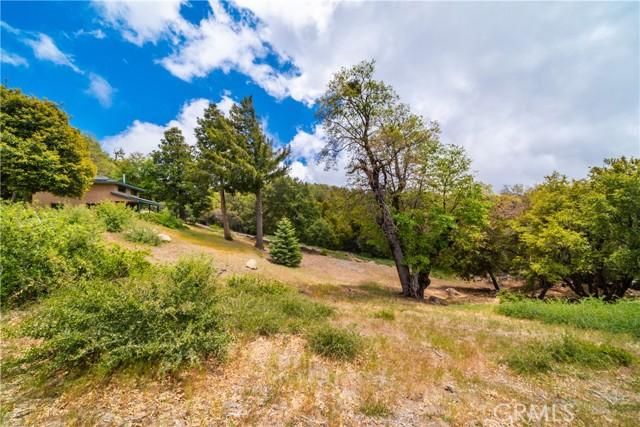 29. 33462 Conifer Rd Palomar Mountain, CA 92060