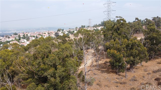 The parcels are located in one of LA County's most sought after areas for luxury homes. And, they are the last of their kind in the area. Don't miss this opportunity. This is a developer dream property. Water and power are nearby, no sewer connection required. Area is zoned for septic systems. According to the city, this project can have up to 26 homes. It is recommended that buyer do their own due diligence as to the cost and time required to procure entitlements on the property.The parcels are located in one of LA County's most sought after areas for luxury homes. And, they are the last of their kind in the area. Don't miss this opportunity. This is a developer dream property. Water and power are nearby, no sewer connection required. Area is zoned for septic systems. According to the city, this project can have up to 26 homes. It is recommended that buyer do their own due diligence as to the cost and time required to procure entitlements on the property.