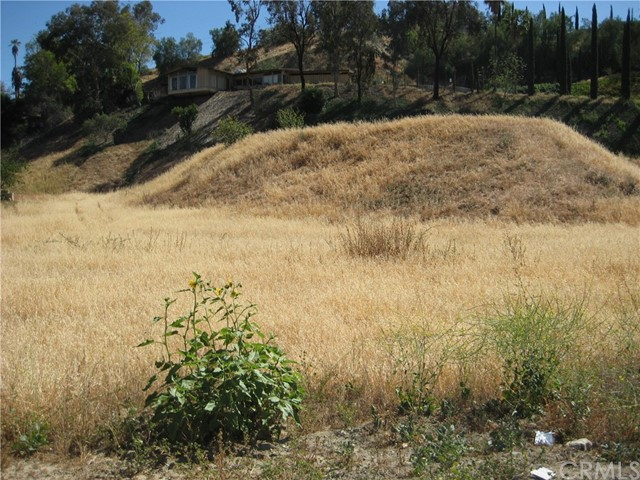 0 Barton Road, Loma Linda, CA 92350