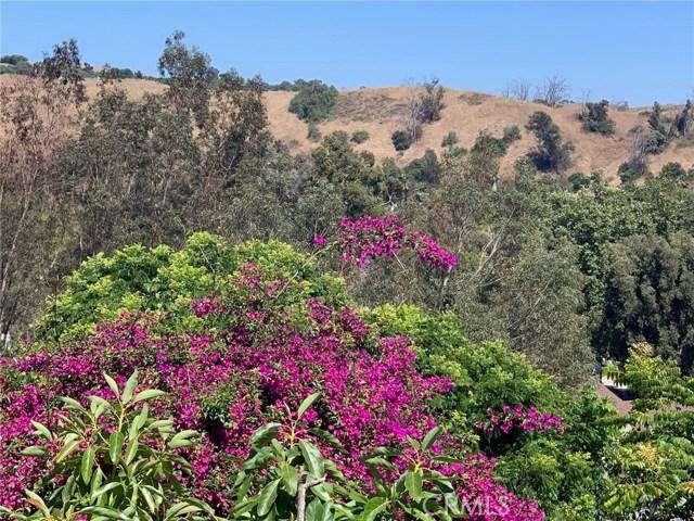 Image 15 of 29614 Spotted Bull Ln, San Juan Capistrano, CA 92675