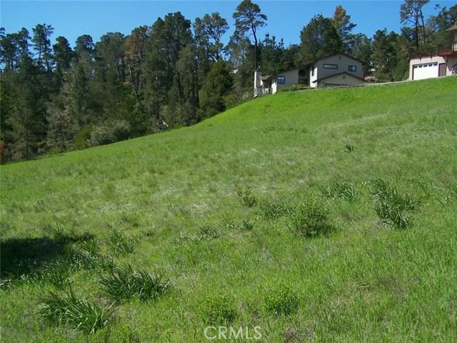 0 Linden Ct, Cambria, CA 93428 Photo 6