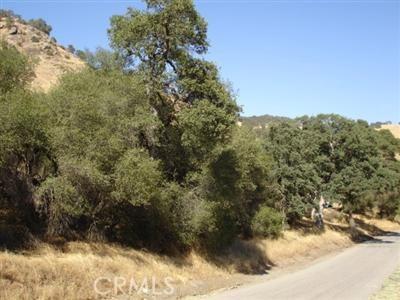 0 APN 190-140-43S, Squaw Valley, CA 93646