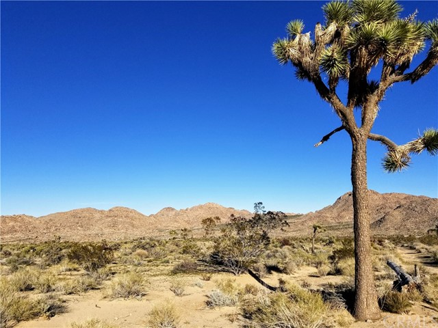 0 Skyline Road, Joshua Tree, CA 92252