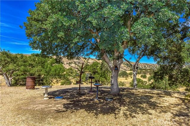 72925 Indian Valley Road, San Miguel, CA 93451 Photo 14