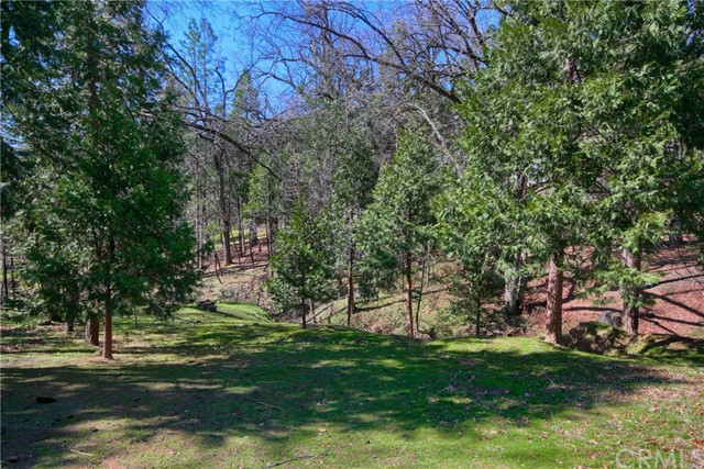 52946 Timberview Rd, North Fork, CA 93643 Photo 50