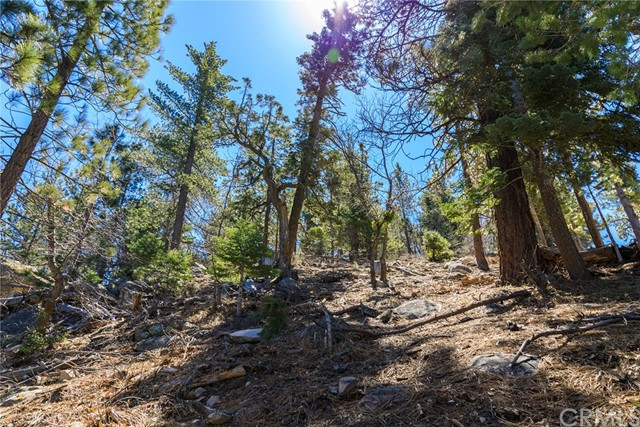 0 Cape Horn, Running Springs Area, CA 92382