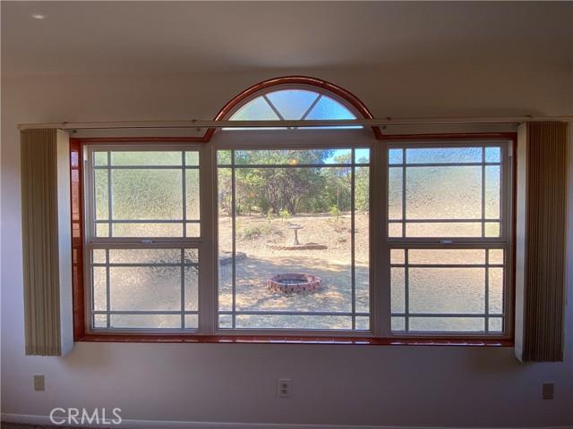 Large window in Den overlooking back yard.