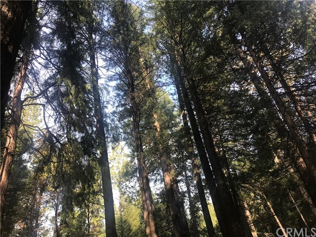 0 Hidden Lake Lane, Magalia, CA 95954