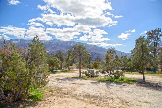 69900 Averill Drive, Mountain Center, CA 92561