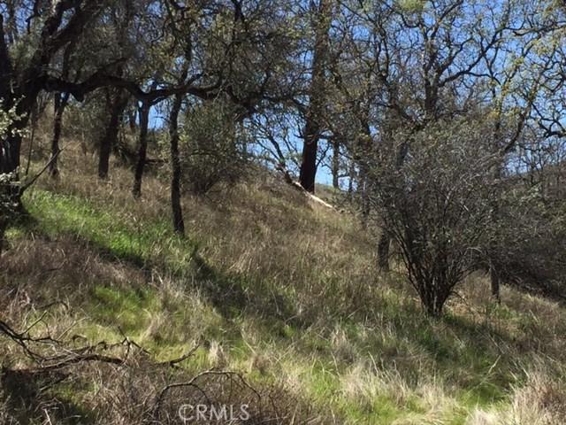 70499 Vineyard Canyon Rd, San Miguel, CA 93451 Photo 2