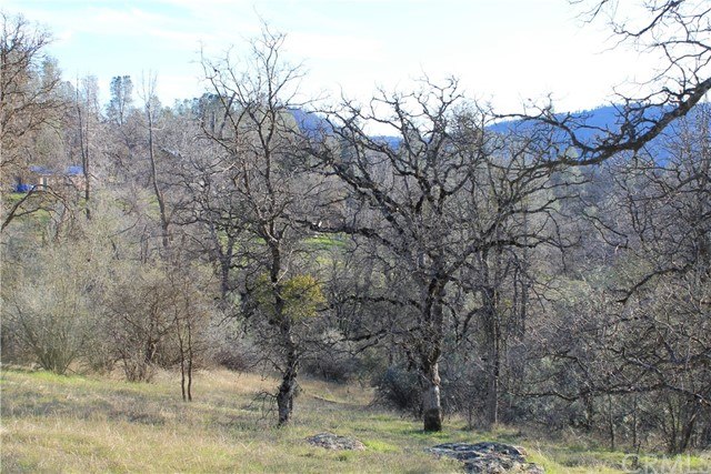 6820 Rancheria Creek Road, Midpines, CA 95345