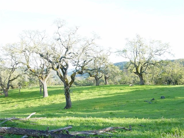 Property for sale at 11880 Santa Rosa Creek Road, Templeton,  California 93465