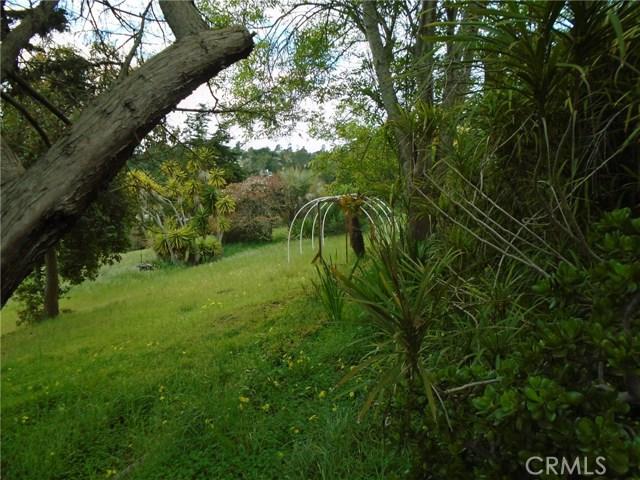 4985 Grove St, Cambria, CA 93428 Photo 6