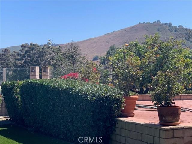 Image 18 of 29614 Spotted Bull Ln, San Juan Capistrano, CA 92675