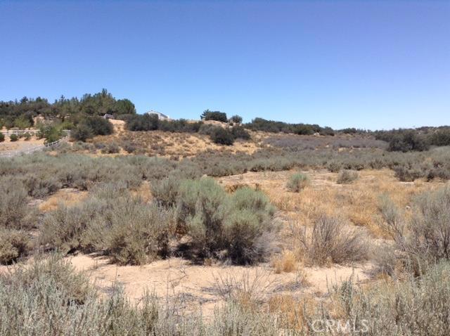 0 Forestry Rd, Oak Hills, CA 92344 Photo 3