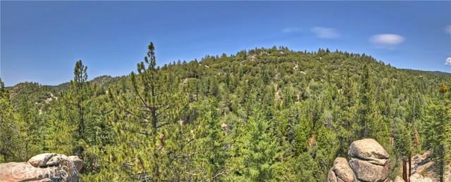 33006 Falling Leaf Ln, Arrowbear, CA 92382 Photo 23