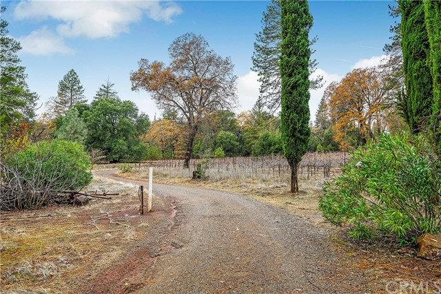 13988 Noble Ranch Rd, Lower Lake, CA 95457 Photo 3