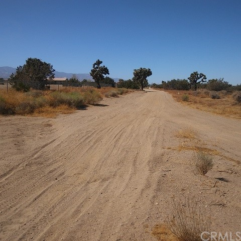 10611 Yucca Terrace Dr, Oak Hills, CA 92344 Photo 7