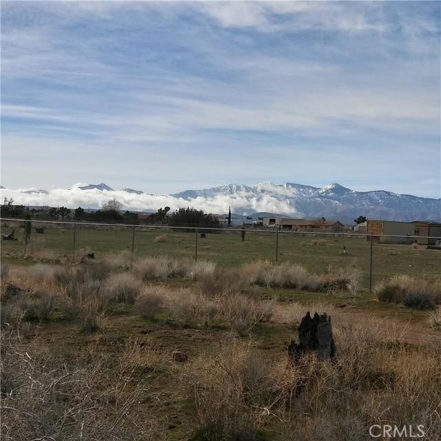 10611 Yucca Terrace Dr, Oak Hills, CA 92344 Photo 2