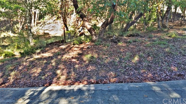 25998 Poppy Place, Willits, CA 95490
