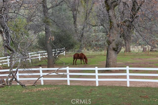 34833 Road 223, North Fork, CA 93643 Photo 48