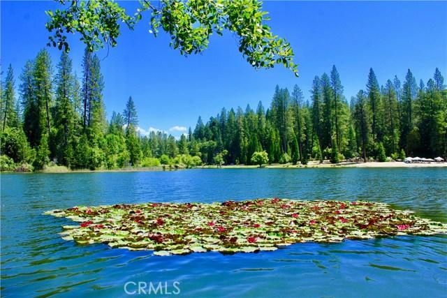 1 Lakeside Way, Berry Creek, CA 95916