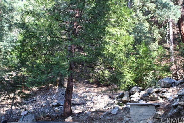0 Snowdrift Drive, Forest Falls, CA 92339