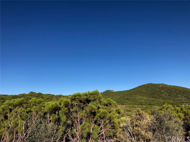 10 Cooper Cienega Trail, Anza, CA 92539
