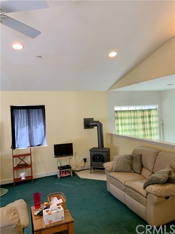 496 Call Of The Canyon Rd, Lytle Creek, CA 92358 Photo 10