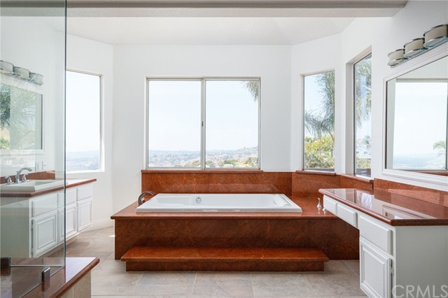 Master suite bathroom with a large tub, vanity, and an awesome view. All the walls have windows allowing the naturel light to coming in.