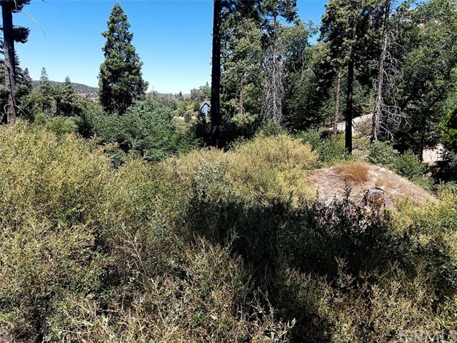 0 Bridge Road, Cedar Glen, CA 92321