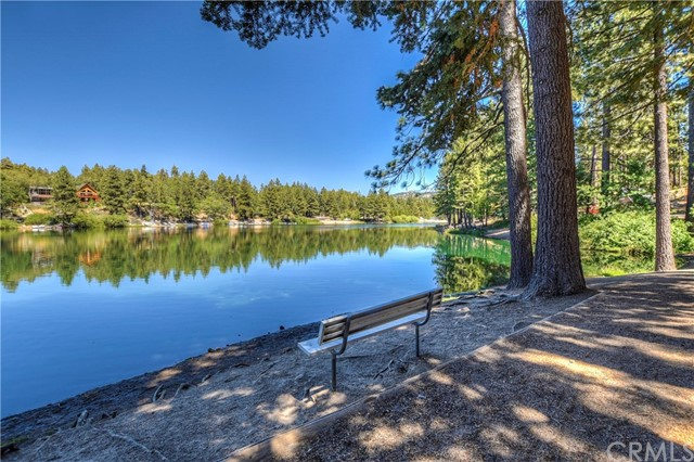 0 Fern Dr, Green Valley Lake, CA 92341 Photo 9