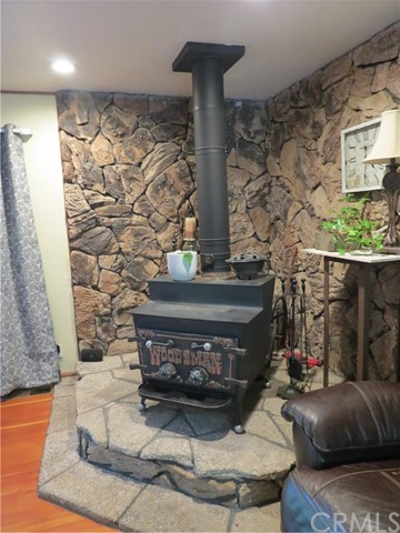 wood stove in Living room