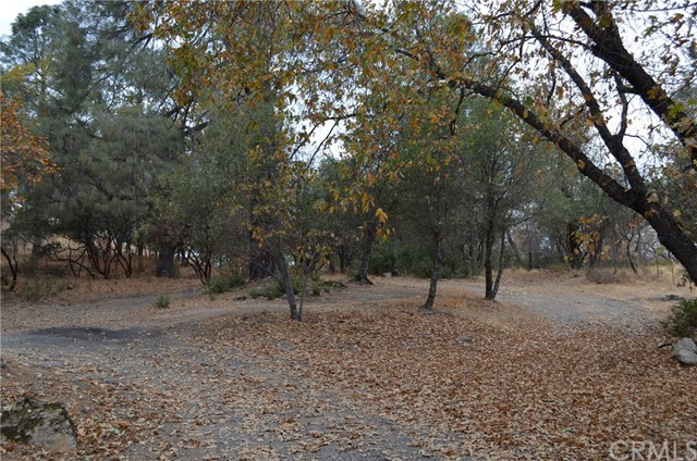 35334 Road 274, North Fork, CA 93643 Photo 7
